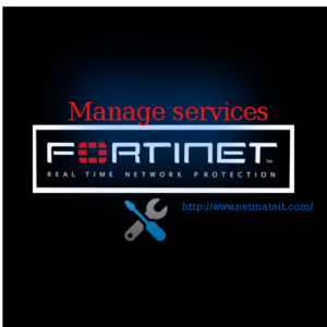 Fortinet Firewall Standard Management Service